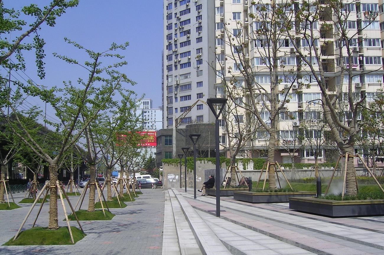 M8 Plaza Shanghai Baumhain
