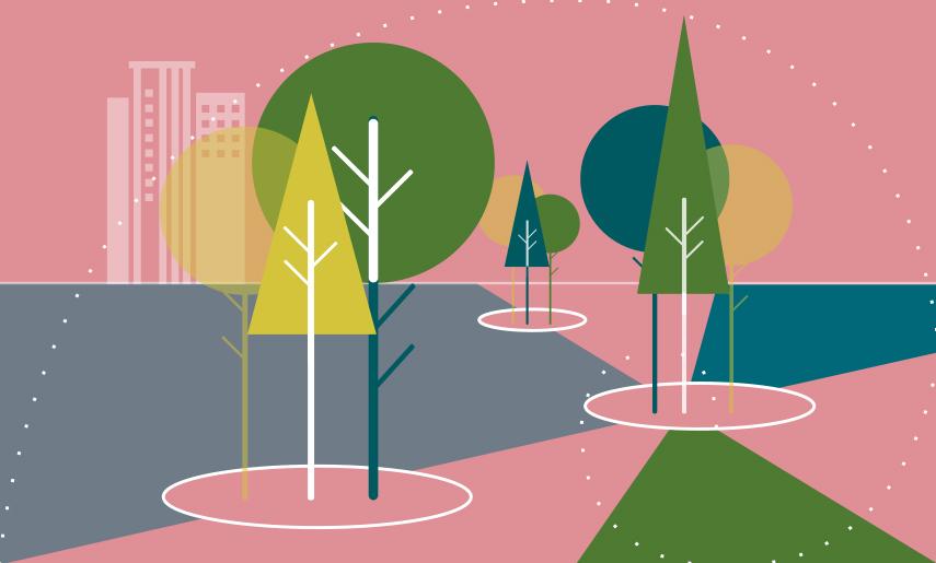 Klima- und Baumhainkonzepte klimafreundliche Stadt