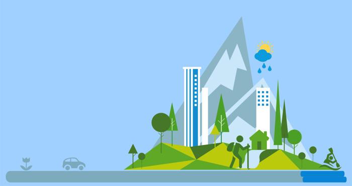 Infografik Baumhainkonzepte für Mensch, Stadt und Natur